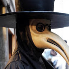 The Plague Doctor Avatar